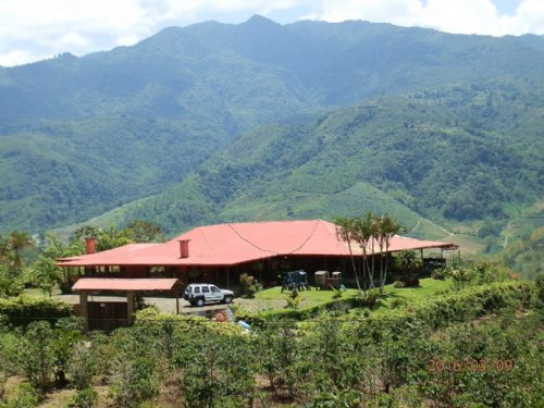 10,000 Sq Ft Mt.Top Home W/ 1 Hec : Orosi Cartago : Costa Rica