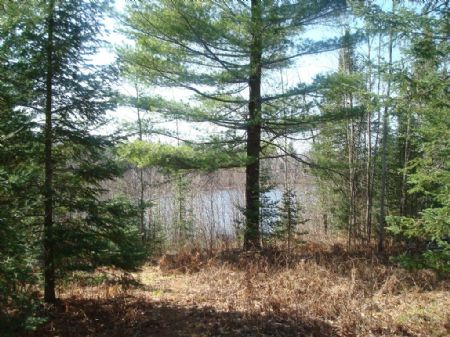174 Ft Water Frontage On Byhre Lake : Fifield : Price County : Wisconsin