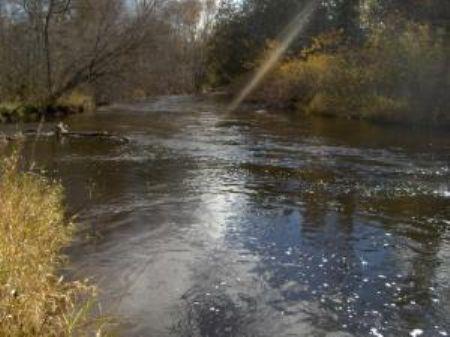 Sturgeon River Frontage : Wolverine : Cheboygan County : Michigan