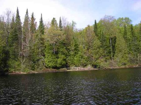 Lot 7-4 Copper Rd Mls #1039424 : Michigamme : Marquette County : Michigan
