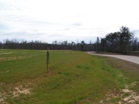 1.60 Acres : Poplarville : Pearl River County : Mississippi
