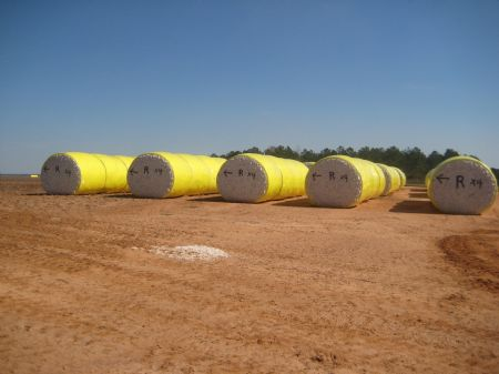 Lime Creek Farm : Americus : Sumter County : Georgia