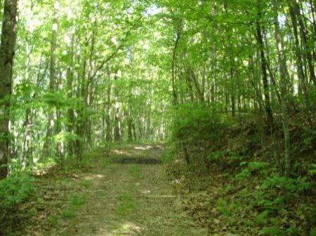 A Tract With Great Potential : Rockwood : Cumberland County : Tennessee