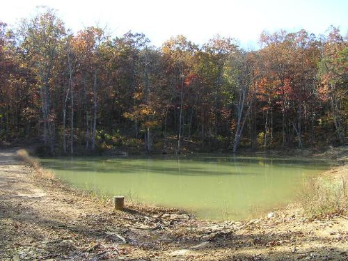 15 Acres, Lake, Views, : Dunlap : Sequatchie County : Tennessee
