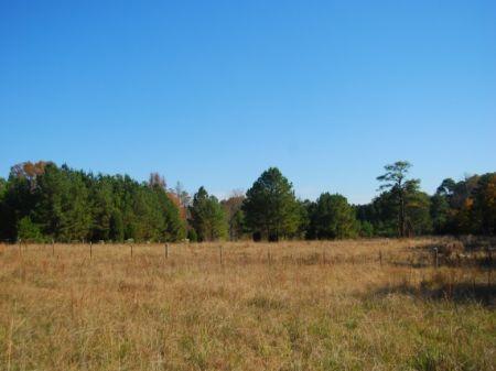 10 Acre Mini-farm : Chester : South Carolina