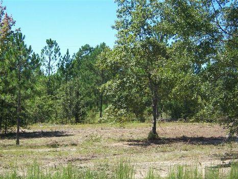 2.45 Acres : Wrightsville : Johnson County : Georgia