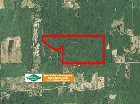 95 Acre Wooded Home Site & Hunting : Calhoun : Ouachita Parish : Louisiana
