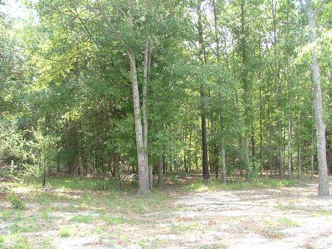 10 Acres : Swainsboro : Emanuel County : Georgia