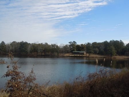 1120+/- Ac Lost Lake Priced To Sell : Louisville : Jefferson County : Georgia