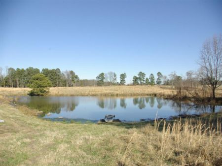 Berry Mountain 73 Ac Pasture & Pond : Cleveland : Blount County : Alabama