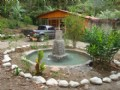 5Ac-House-Pool-Creek-Woods-Springs : Orosi Cartago : Costa Rica