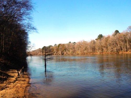 Stockton Plantation : Newington : Screven County : Georgia