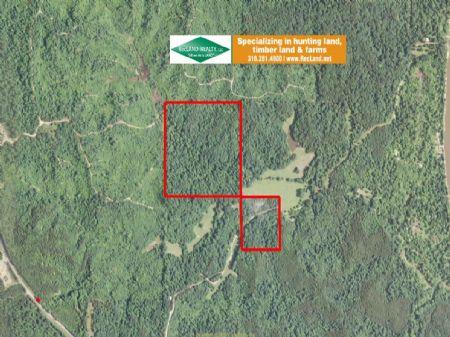 50 Ac Timberland, Hunting : Columbia : Caldwell Parish : Louisiana