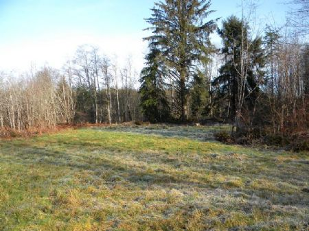This Very Private Acreage Homesite : Elma : Grays Harbor County : Washington