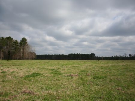 400 Acres Cattle Or Horse Farm : Forest : Scott County : Mississippi
