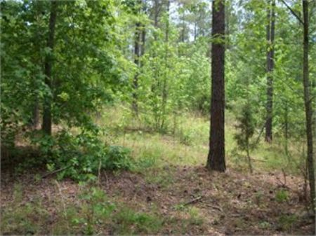 212 Acres : Greenwod : Greenwood County : South Carolina