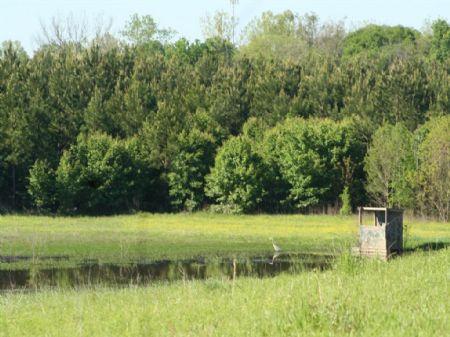 Alabama River Parkway Bend #29-002 : Millbrook : Elmore County : Alabama