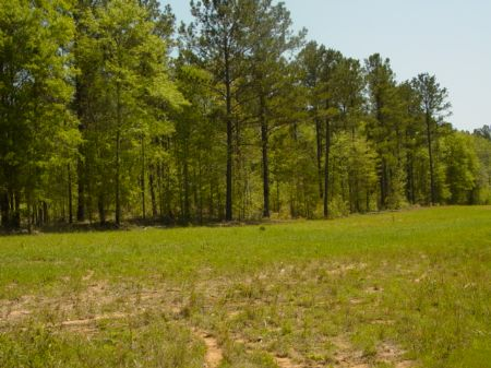 149.5 Ac On George Brown Rd. : Franklin : Heard County : Georgia