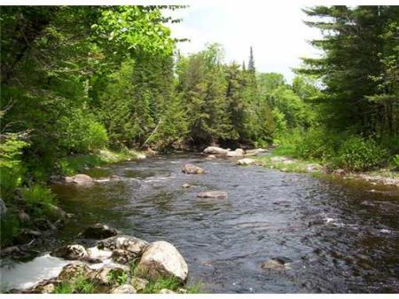 On Higgins Stream : Harmony : Somerset County : Maine