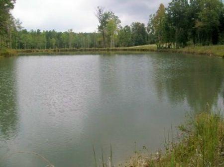 Ac230-lot 11 Country Lake Estates : Roanoke : Randolph County : Alabama