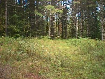 Great Building Lots In Northern Mai : Lee : Penobscot County : Maine