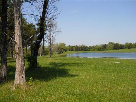 93 Acres Of Potential Develm't Land : Starkville : Oktibbeha County : Mississippi