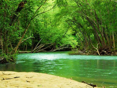 Land And Minerals 973 Acres : Clinton : Van Buren County : Arkansas