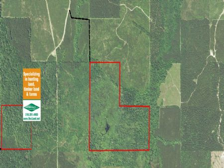 122 Acres Hunting/timber : Chatham : Jackson Parish : Louisiana
