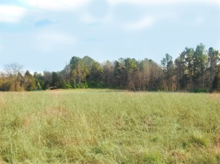 25 Acre Farm In Cross Keys Area : Union : South Carolina