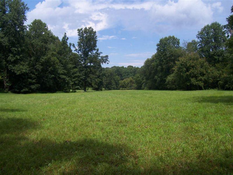 Horse Farm Land For Sale Alto Hall County Georgia