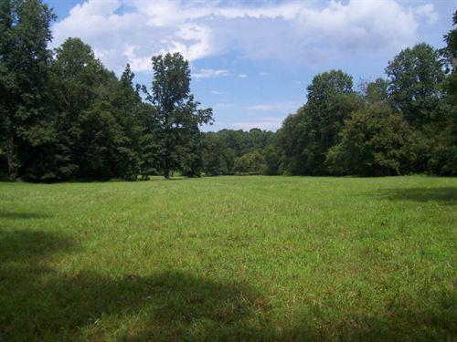 Horse Farm : Alto : Hall County : Georgia