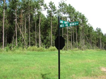 5.36 Acre Estate-sized Lot : Carriere : Pearl River County : Mississippi