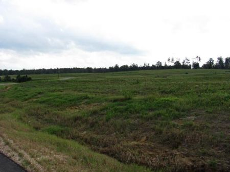 3.78 Acre Estate-sized Lot : Carriere : Pearl River County : Mississippi