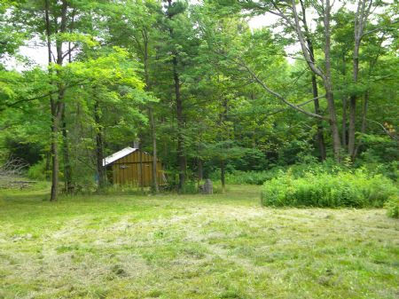 4+ Acres Camp Bordering State Land : Newfield : Tompkins County : New York