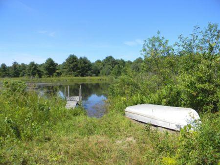 132+ Acres  3 Ponds Woods Wildlife : Groton : Tompkins County : New York