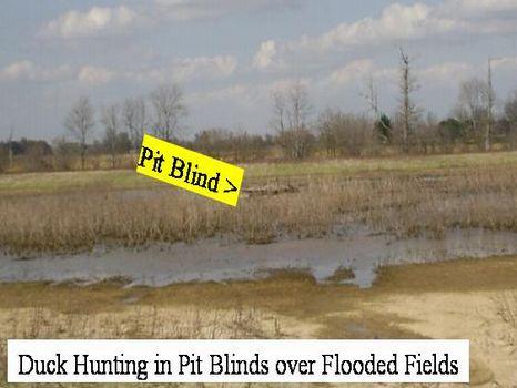 127 Ac MS Delta Duck Hunting Land : Lambert : Quitman County : Mississippi
