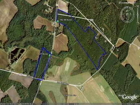 163+/- Acres close to I-16 : Brooklet : Bulloch County : Georgia