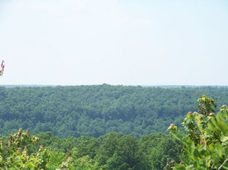 7 Acres Near Sewanee University : Sewanee : Marion County : Tennessee