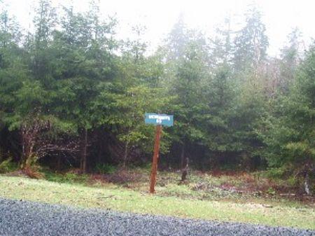 Powers Creek Forest Reserve #23 : Elma : Grays Harbor County : Washington