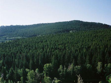 Hi Country Estates : Buffalo : Johnson County : Wyoming