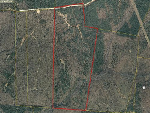 Hunters Dream 110.7 Secluded Acres : Stephens : Oglethorpe County : Georgia