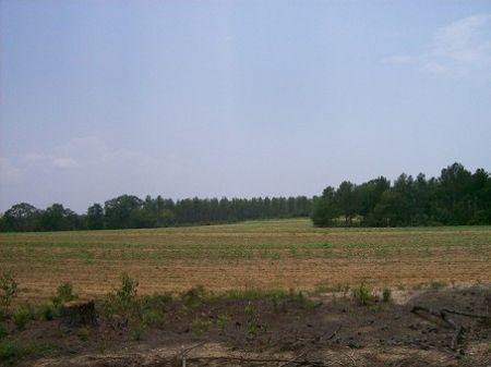 Southern Farm : Columbia : Houston County : Alabama