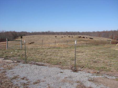 Beautiful Building Site-47 Acres : Columbia : Adair County : Kentucky