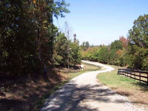 5.905 Bank Owned Wooded Acres : Dallas : Paulding County : Georgia