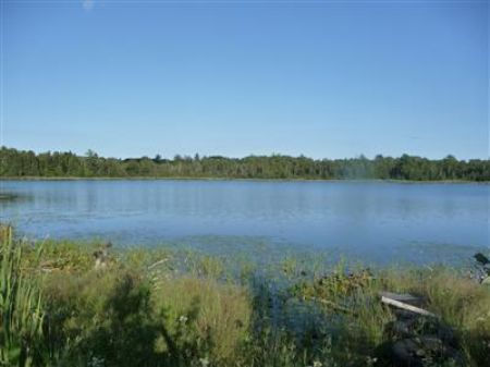 Blodgett Lake Acreage : Hersey : Mecosta County : Michigan