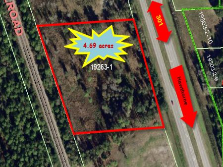 4.69 Acres (a-359) : Hawthorne : Alachua County : Florida