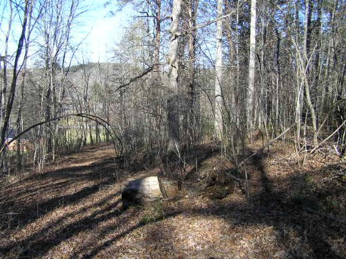 Unrestricted Wooded Acres : Palmer : Grundy County : Tennessee