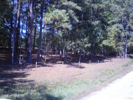 15 Acre Farm In Loganville, Ga : Loganville : Walton County : Georgia