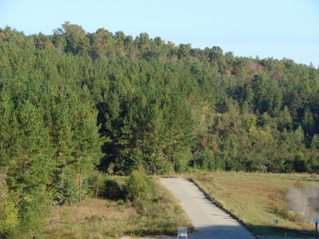 26 Acres Just North Of Montgomery : Wetumpka : Elmore County : Alabama