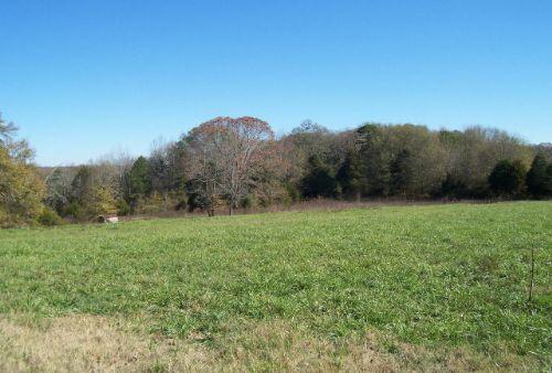 Residential / Recreational Land : Jefferson : Jackson County : Georgia
